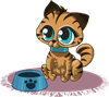 kitty-1459135_960_720.png